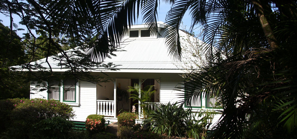 Waipio Wayside, Exterior, White house, palm trees in foreground
