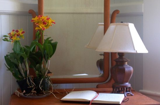 Waipio Wayside, Moon Room, Lamp, mirror and flowers behind an open book